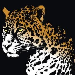 giaguaro disegno